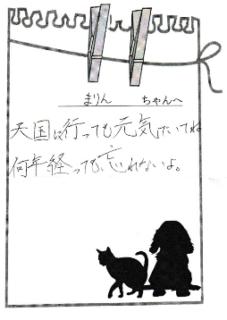 まりんちゃんへのメッセージ