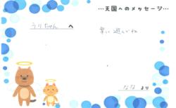 うりちゃんへのメッセージ