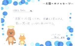 りぼんちゃんへのメッセージ