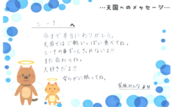 ニーナちゃんへのメッセージ