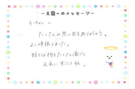 ちーちゃんへのメッセージ