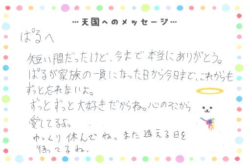 ぱるくんへのメッセージ