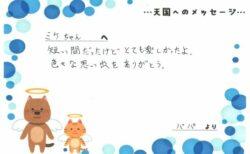 ミケちゃんへのメッセージ